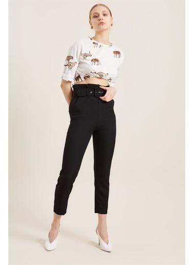 Z Giyim Kadın  Mavi  Kemerli Yüksek Bel Kumaş Pantolon Siyah